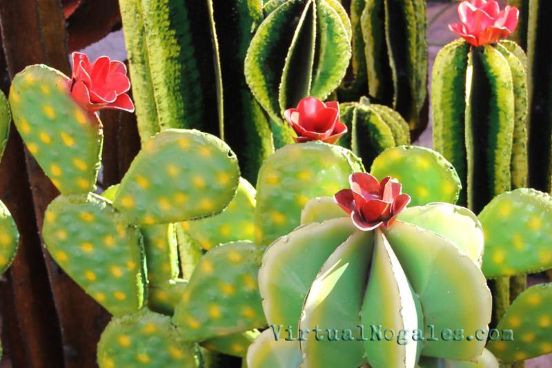 metal cactus curios in nogales